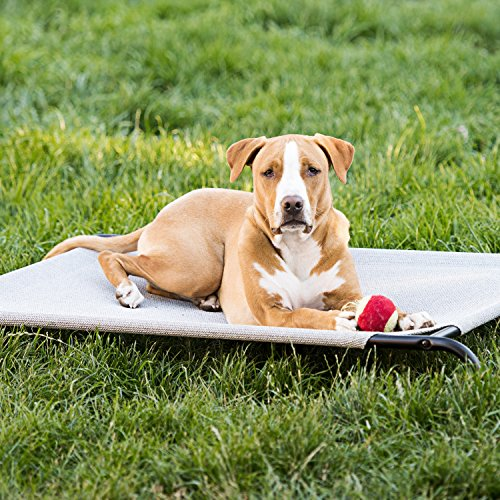 Elevated Cooling Dog Bed, Knitted Fabric Pet Cot, Portable (Large) by Animals Favorite (Image #5)