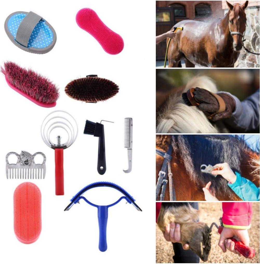 10 Unids Juego de Cepillos de Caballo Juego de Cuidado de Aseo de Caballos Equestrain Brush Curry Comb Juego de Herramientas de Limpieza de Caballos