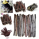 SNNplapla 520g(18.2oz) Apple Branch Chew Sticks Rabbits Hamster Guinea Pig Parrots Mice Rat Snacks, (Each Stick Length: 10CM)