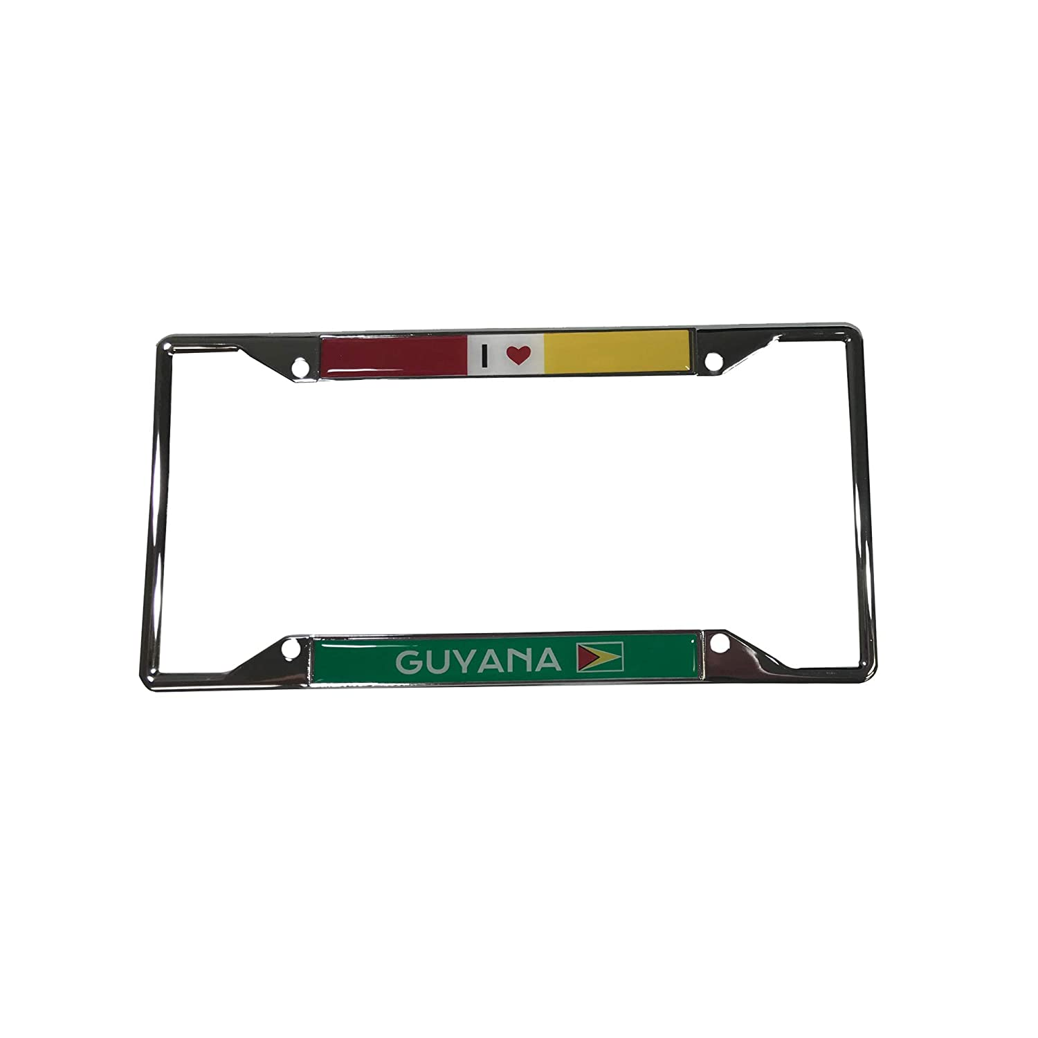 Desert Cactus Country of Guyana I Heart Love License Plate Frame for Front Back of Car Vehicle Truck Guyanese