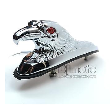 Adorno de cabeza de águila para motocicletas y coches, de la marca BJ Global: Amazon.es: Coche y moto
