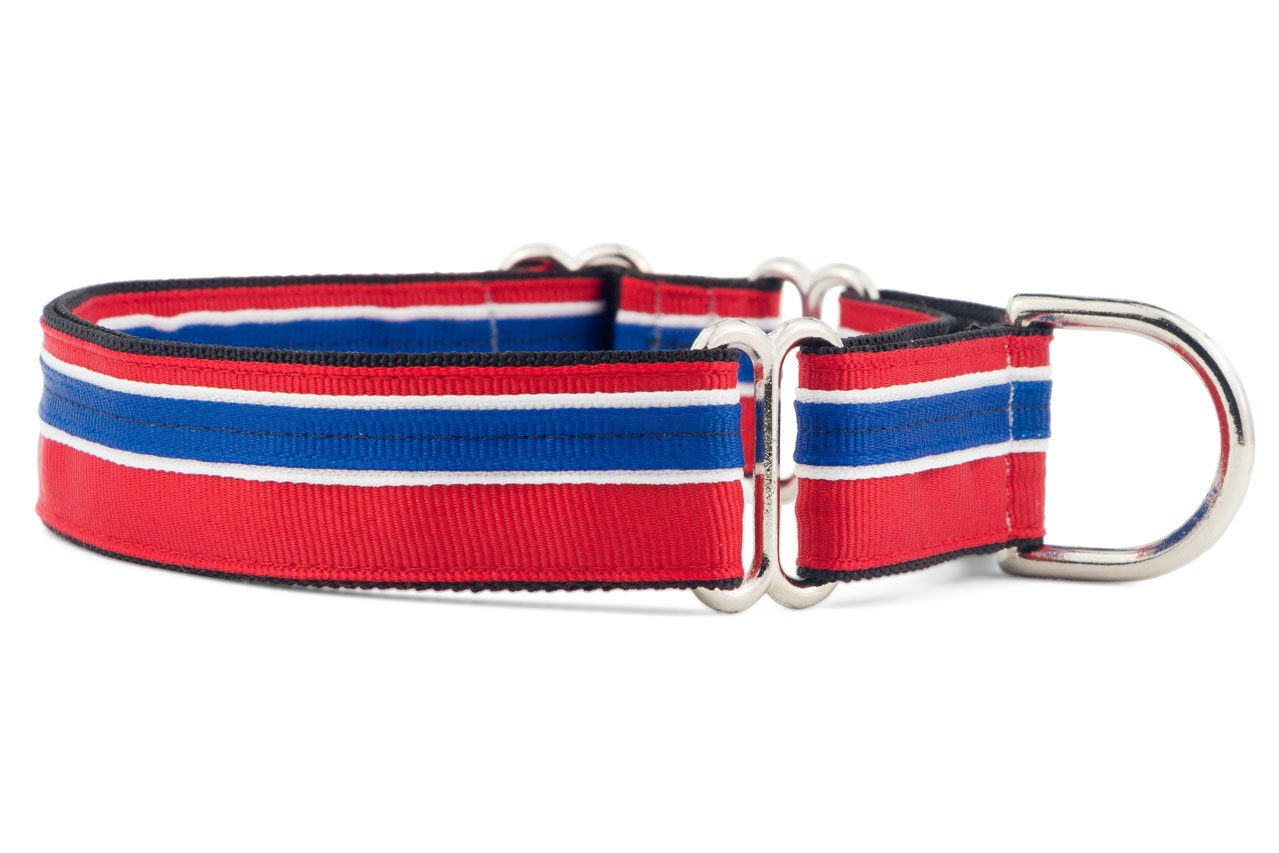 If It Barks 1'' Martingale Collar for Dogs, Adjustable Nylon, USA Made, Medium, Patriotic by If It Barks