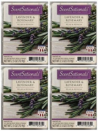 注文割引 ScentSationals Lavender & Rosemary Lavender Scented Wax & Cubes - 4-Pack Cubes B079WN5K3L, 印鑑屋:202af94d --- albertlynchs.com