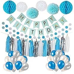 LITAUS Frozen Theme White Blue Party Decorations girls, balloons, Pom Poms Flowers, birthday banner, paper Garland , Tassels 1st Birthday Girl Decorations Kids Birthday