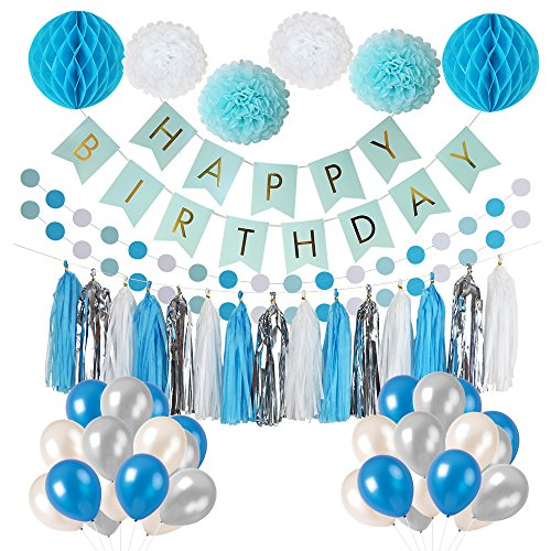 LITAUS Frozen Theme White Blue Party Decorations girls, balloons, Pom Poms Flowers, birthday banner, paper Garland , Tassels 1st Birthday Girl Decorations Kids Birthday
