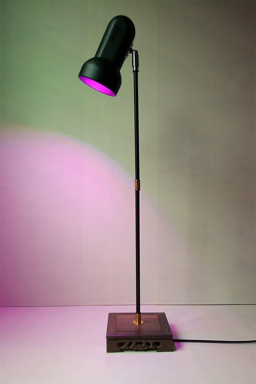 Amazon.com: Lámpara de interior Planta crecer luz Soporte ...