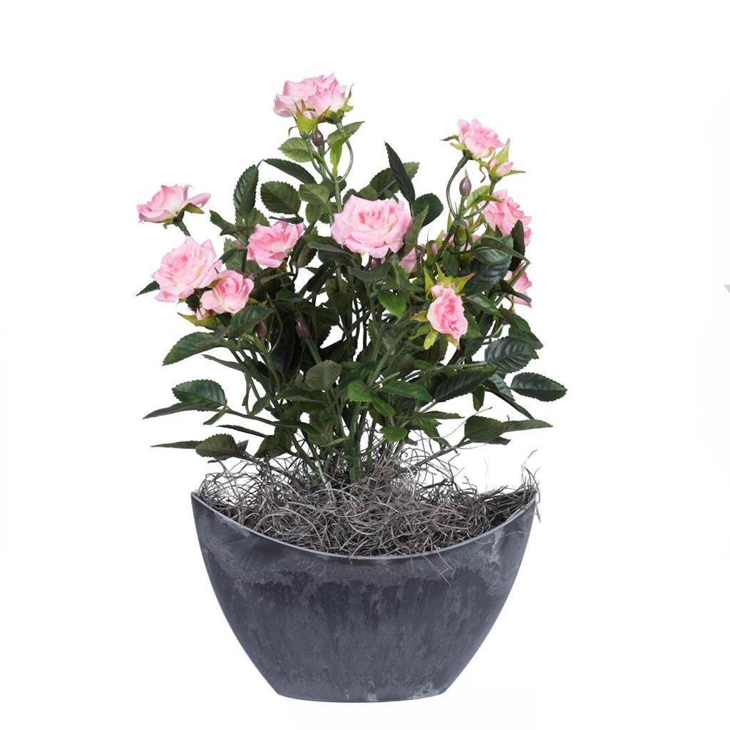 Vickerman F12228 Light Pink Rose Everyday Floral