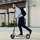 Electric Scooter Adults Kick Scooter, Max 250W