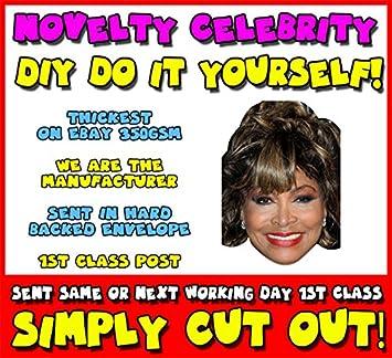 Diy do it yourself face mask tina turner celebrity face mask diy do it yourself face mask tina turner celebrity face mask solutioingenieria Images