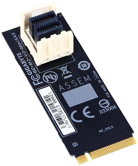 Gigabyte GC-M2-U2-MiniSAS Tarjeta y Adaptador de Interfaz U ...