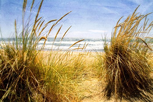 Dune Grass 3 , 24x36in. (paper) by