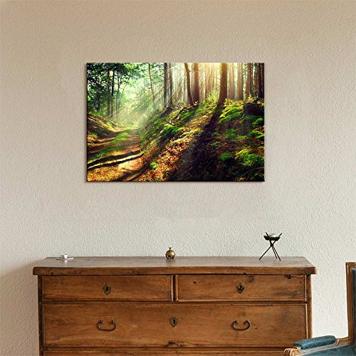 Beautiful Scene of Misty Old Path in Forest on an Sunny Autumn Morning Wall Decor