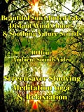 Beautiful sun glinted lake distant wind chimes and soothing nature sounds 10 hour ambient sounds video screensaver studying relaxation meditation yoga