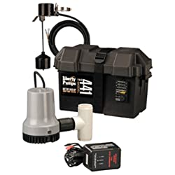 Liberty Pumps 441 Battery Backup Emergency Sump Pump System