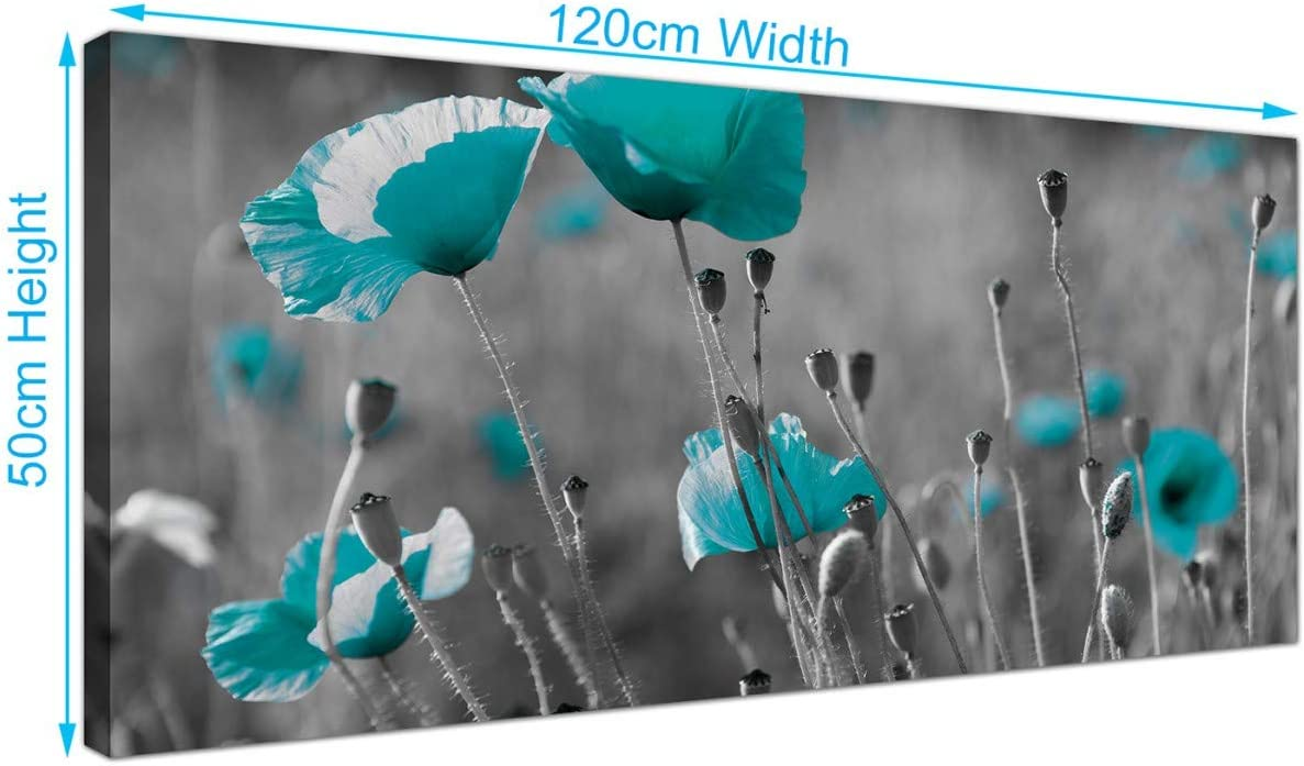 Wallfillers Modern Black And White Canvas Prints Of Teal Poppies Wide Turquoise Floral Wall Art 1139 Amazon Co Uk Kitchen Home