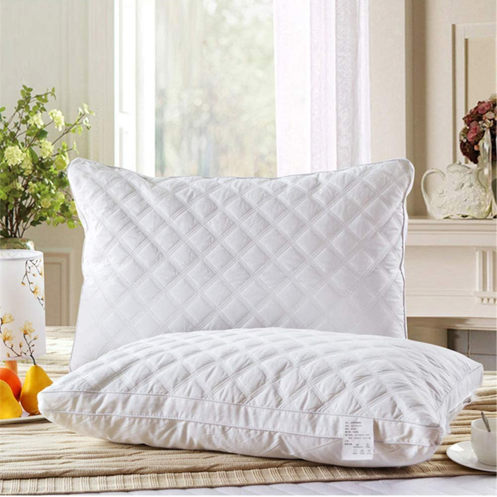 2 Pack Luxury White Queen Size Soft Hypoallergenic Bed Pillow for Sleeping Silk Fabric and Feather Velve Filler Adjustable Relief Neck Pain-White 48x74cm 19x29inch