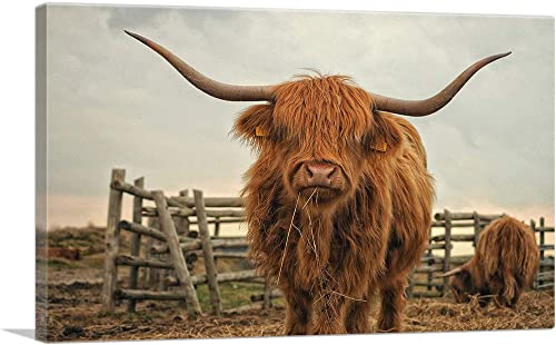 ARTCANVAS Highland Cow Cattle Stable Canvas Art Print