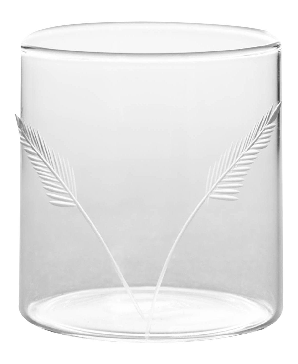 Borosil VDFT305 Vision Deco Fern Tumbler (Set of 6), 10 oz (300ml), Glass
