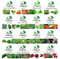 Golden autumn farm- Organic vegetable seeds set -16/ ORGANIC NON-GMO Easy-to-Grow vegetable Seeds