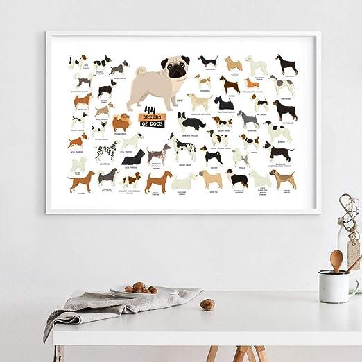 ACYKM Colección de Razas de Perros Ilustración Cartel Arte ...