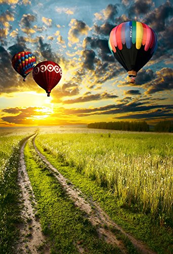 Laeacco Vinyl 5x7FT Photography Background Color Fire Balloons Grass Field Trail Path Rural Scenery Sunset Glow Dark Clouds Scene Personal Portraits Background 1.5(W)x2.2(H)m Photo Studio Props