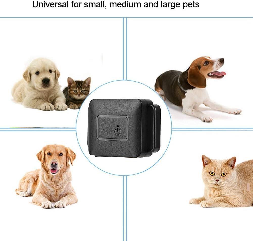 Localizzatore GPS Per Cani Il Gps Per Cani E Gatti Localizzatore Di Animali Domestici Tracker Locator Per Cani Funzione Di Posizionamento Wifi Funzione Memoria Percorso Monitoraggio Intelligente