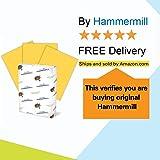 Hammermill Goldenrod Colored 20lb Copy