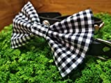 Black Gingham Checkered Pet Bow Tie