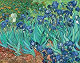 Vincent van Gogh (Irises, 1889) Hand-Painted Art Reproduction with Oil on Canvas (28x36.6 in) (71x93 cm)
