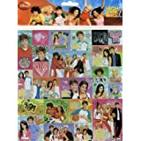 High School Musical 2 Sticker Sheets - Set of Two - 54 Stickers in All