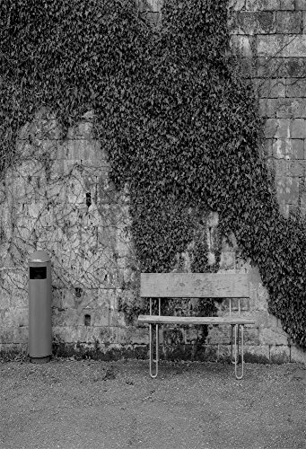 AOFOTO 6x8ft Photography Backdrop Artistic Background Grey Blurry Brick Wall Vines Ivy Bench Old Mailbox Nostalgic Scene Adult Kid Portrait Photo Studio Props Vinyl Wallpaper