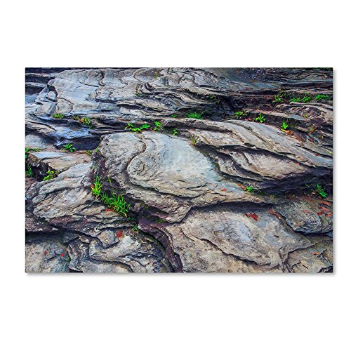 Linville River Rock by Bob Rouse, 22x32-Inch Canvas Wall - Linville Natural