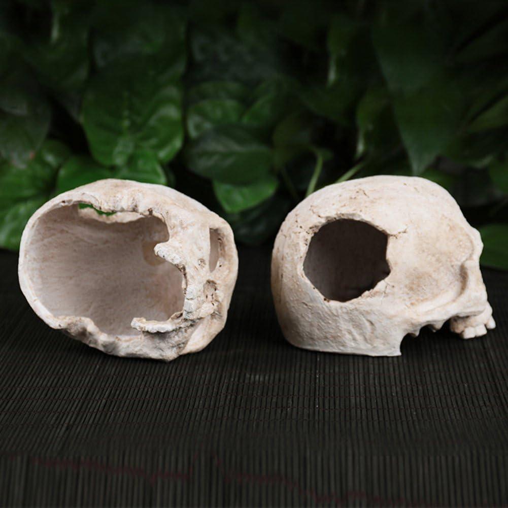 Bernect Reptile Habitat D/écor Reptile Houses Skull for Hide Lizard Spider Scorpion Aquarium Ornament Terrarium Decor