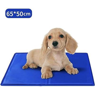 Nobleza – Alfombrilla refrescante para Mascotas Grandes. Auto refrigerante No tóxico. Ideal para para Perros, Gatos en Verano. 65 * 50 cm, Color Azul, M