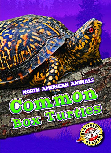 Common Box Turtles (North American Animals: Blastoff! Readers, Level 3)