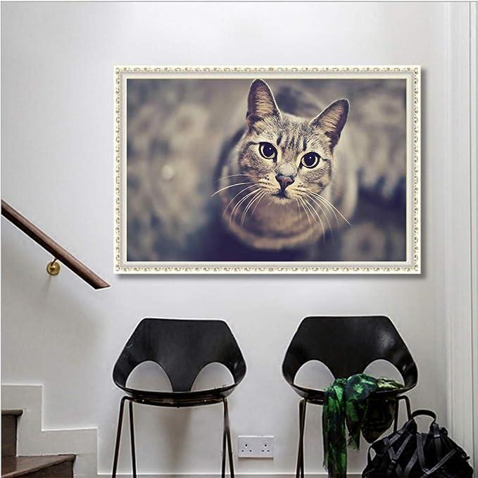 QIMANZI DIY 5D Bonito patrón de Gato Diamante Peinture Point de ...