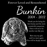 Personalized Lop Eared Rabbit Bunny Pet Memorial 12''x12'' Custom Engraved Black Granite Grave Marker Head Stone Plaque BUN1