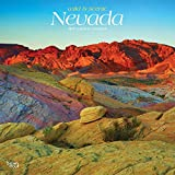 Nevada, Wild & Scenic 2019 12 x 12 Inch Monthly Square Wall Calendar, USA United States of America Rocky Mountain State Nature