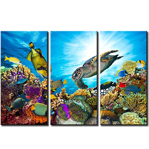 "Modern Framed Canvas Art Print Sea Turtle and Tropical Fish Ocean Underwater World Painting Prints Poster Colorful Wall Decor Stretched Ready Hanging On 16""x32""x3"