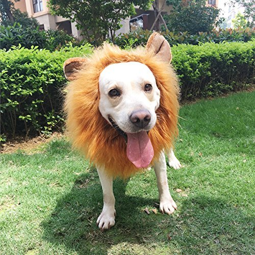 Lion Mane for Dog, PBPBOX Dog Lion Mane with Open Ears Adjustable Lion Wig for Dog Costume]()
