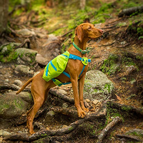 Crest Stone Explore Dog Backpack Hiking Gear For Dogs by Outward Hound, Large/X-Large