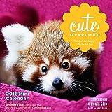 Cute Overload Mini Wall Calendar 2016