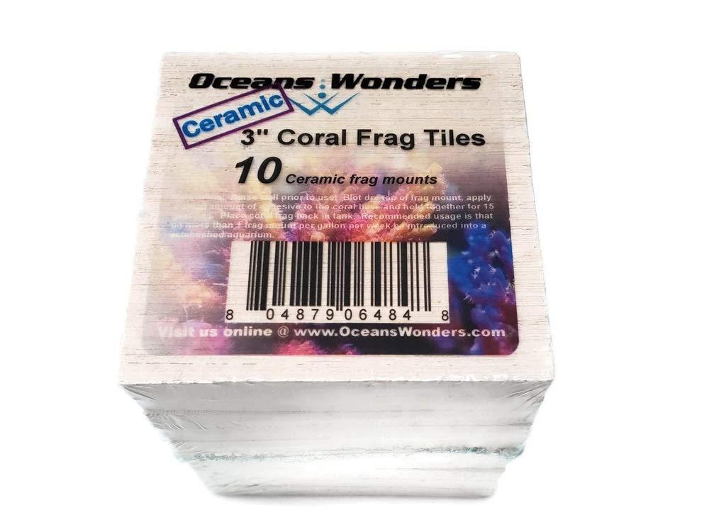 Oceans Wonders Ceramic XXL 3'' Coral Frag Tiles 10pc by Oceans Wonders