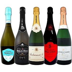 これぞ贅沢 シャンパンも入ったバラエティ豊かな魅惑の上質スパークリングワイン 5本セット