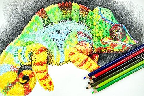 Arteza Professional Colored Pencils (Set of 72) Photo #6