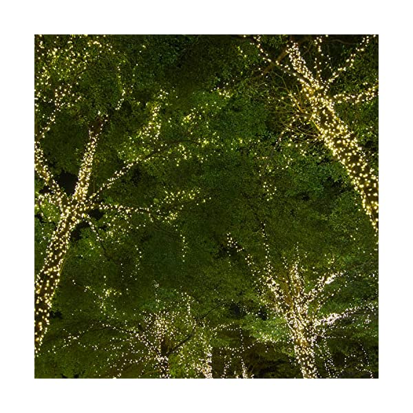 ANSIO Luci natalizie Luci natalizie esterne 1000 LED 10 m bianco caldo interno Catena luminosa interna Funzione memoria albero di Natale, alimentazione elettrica Lunghezza illuminata 50 m - Cavo verde 6 spesavip