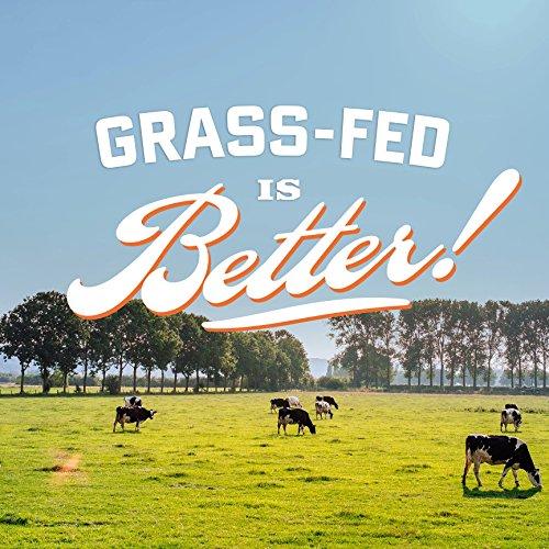 Country Archer 100% Grass-Fed Gluten Free Beef Jerky, Teriyaki, 8 Ounce
