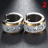 1Pair Jewelry Scrub Cubic Zircon Ear Stud Hoop Earrings Stainless Steel