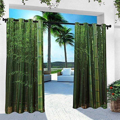 Linden Window Treatments - Hengshu Bamboo, Outdoor Curtain for Patio,Outdoor Patio Curtains,Picture of a Bamboo Forest Exotic Fresh Jungle Vision with Tall Shoots Tropic Art Print, W120 x L84 Inch, Green