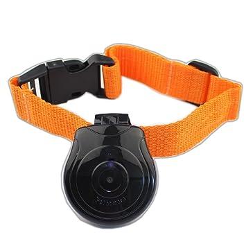 TOOGOO(R) Camara de leva de collar para mascota digital Mini Camara grabadora de video DVR Monitor de grabadora de video para perrito gato perro Negro: ...